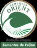 oritent-1